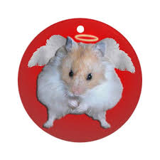 hamster ornament by kathyskritters