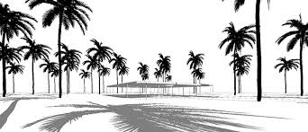 coconut tree for revit archigrafix com