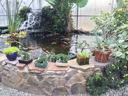 garden center exotic plants american landscape