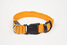 light up collar amazon amazon com orange dog collar adjustable length led light up