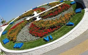 miracle garden dubai u2013 undoubtedly a miracle of nature u0027s beauty