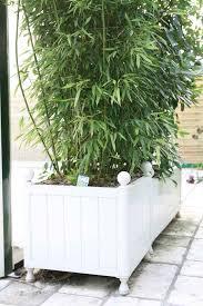 decoration avec des pots en terre cuite les serres de butry choisir un pot en plastique ou en terre