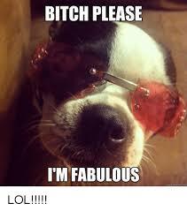 Bitch Im Fabulous Meme - 25 best memes about bitch please im fabulous bitch please