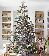 best 25 silvertip tree ideas on traditional