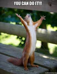 Meme You Can Do It - you can do it happy squirrel make a meme