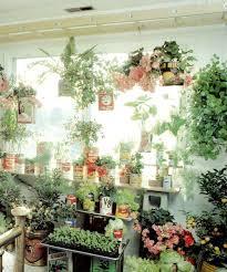 Indoor Garden Containers - 39 best indoor vegetable garden images on pinterest gardening