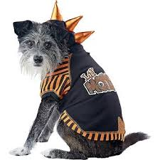 Extra Small Dog Halloween Costumes Amazon Petco Wag Tude Lil U0027 Monster Dog Hoodie Costume
