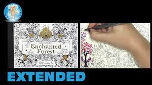 Barnes And Noble Postcards Enchanted Forest 20 Postcards Johanna Basford Coloring Book