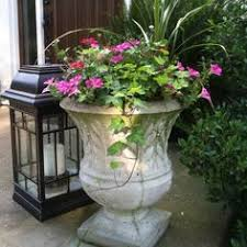 Porch Planter Ideas by Geraniums Diamond Frost Vinca Vine Spike And Fillers Love It