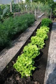 fabulous organic soil for vegetable garden 5 ways organic mulch