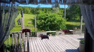 looking onto back deck humming bird feeders on the window