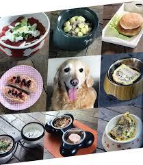 cuisiner pour chien je cuisine pour mon chien