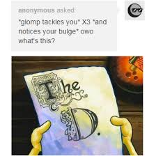 Whats Memes - notices bulge owo what s this know your meme