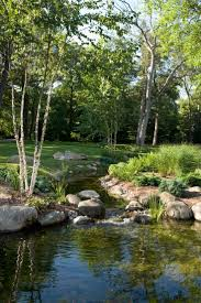 679 best water images on pinterest garden ponds backyard ponds