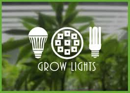 plant light for weed grow light accessories marijuana grow supplies category pot