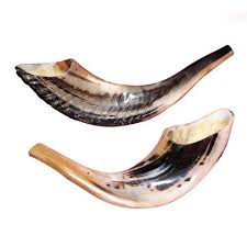 rams horn trumpet 21 best and coolest shofars top musical instruments