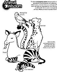 animal wisdom coloring crayola