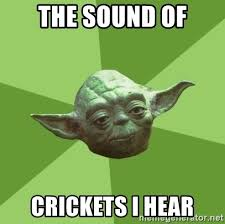 Crickets Chirping Meme - crickets meme pictures to pin on pinterest thepinsta