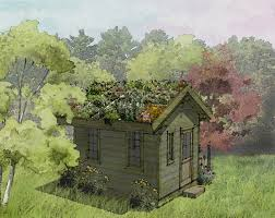 go green in your backyard with a living roof garden shed