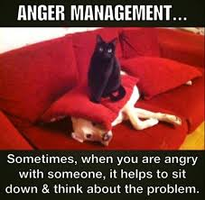 anger managment dog and cat meme
