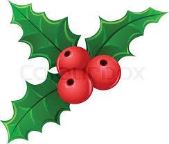 christmas mistletoe christmas berry mistletoe stock vector colourbox