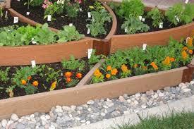 raised bed vegetable gardening for beginners uk garden design