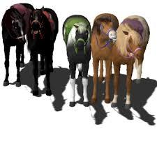 horseland romantic writer exchange community sims 3
