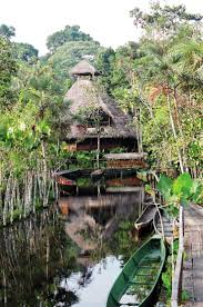 70 best amazon images on pinterest jungles lodges and travel