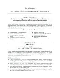 call center resume examples efficiencyexperts us