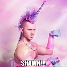 Shawn Meme - shawn meme unicorn man 47249 memeshappen