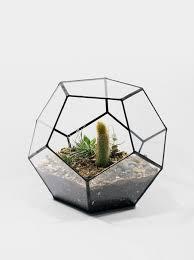 more in stock geometric glass pot succulent terrarium