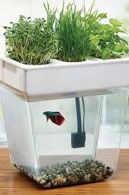 window planters indoor 17 indoor herb garden ideas kitchen herb planters