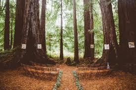 redwood forest wedding venue magical estate wedding in the middle of a redwood forest junebug
