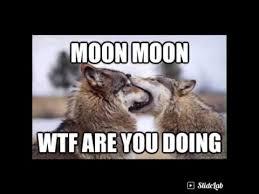 Moon Moon Meme - moon moon memes youtube