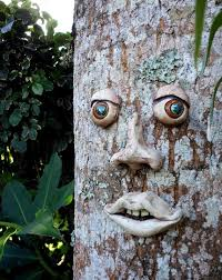 best 25 tree faces ideas on tree carving strange