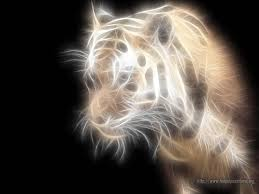 imagenes abstractas hd de animales 82 best jc3 images on pinterest abstract searching and background