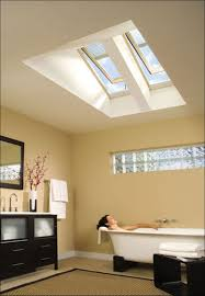 Skylight Design Bathroom Wonderful Skylights For Bathroom Decoration With Pitched