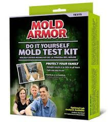 Mold Smell In Bathroom Getting Rid Of Mold