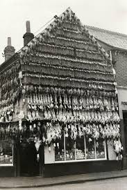 the 25 best butcher shop ideas on pinterest meat shop butcher in high wycombe england c 1938 christmas turkeys