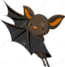bats animal images u0026 stock pictures royalty free bats animal