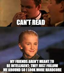 Stupid Friends Meme - malfoy s friend choices are questionable imgflip