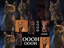 Puss In Boots Meme - puss in boots movies films flix