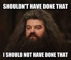 Shaving Meme - livememe com hagrid shouldn t have done that he should not have