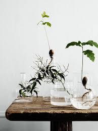 Round Glass Vase Diy Home Inspo Round Glass Vases A Pair U0026 A Spare