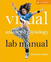 Pearson Anatomy And Physiology Lab Manual Visual Anatomy U0026 Physiology Lab Manual Pig Version Stephen N