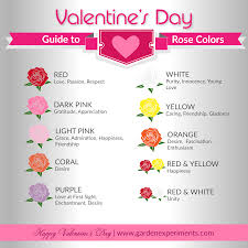 roses colors the meaning of colors a s day guide