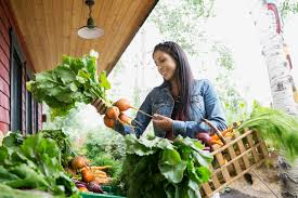 How To Get Usda Certified How To Locate An Organic Certification Agency