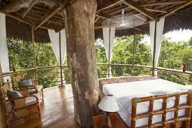 Treehouse Lodge Peru  Rainforest Cruises