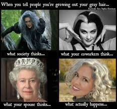 Hair Meme - funny silver hair meme by sara sophia eisenman funny silverhair
