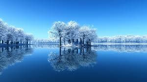 frozen trees mirror lake hd wallpaper